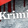 Krimi-guide